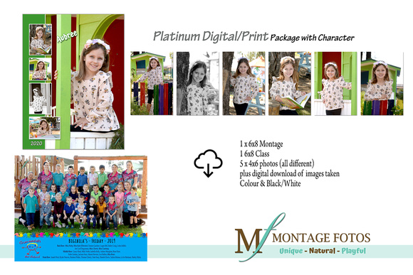 Digital Platinum Preschool